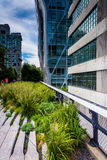 Modern buildings along the High Line in Manhattan, New York. Royalty Free Stock Photos