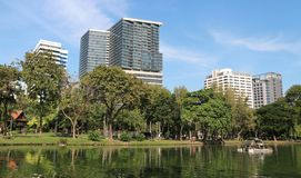 Modern buildings beyond Lumpini Park royalty free stock images