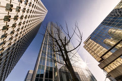 Modern Buildings. Business Concept Royalty Free Stock Images