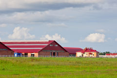 Modern buildings cattle farm. Agriculture in Belarus Royalty Free Stock Images