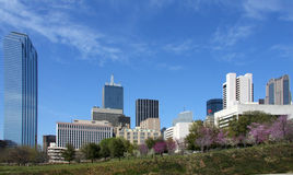 Beautiful skyline of  Dallas Stock Images