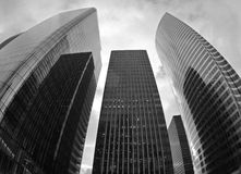 Modern buildings from glass. Black and white photo of modern buildings Royalty Free Stock Photography