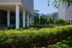 Modern buildings hedged with shrubs in sunny summer. Chengdu,China Royalty Free Stock Image