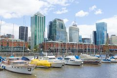 Modern buildings from Puerto Madero, Buenos Aires, Argentina. Landmark. Buenos Aires cityscape rio del plata architecture argentinian boat bridge commercial stock photo