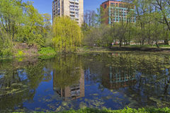 Modern buildings are reflected in the old pond. Stock Photography