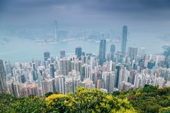 Modern buildings and sea from Victoria peak at Hong Kong stock photography