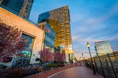 Modern buildings and the Waterfront Promenade in Harbor East, Baltimore, Maryland royalty free stock images
