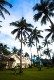 Modern bungalows and palms royalty free stock photo