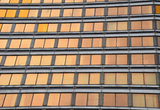Modern business building glass windows at sunset Royalty Free Stock Photo