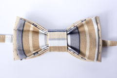 Modern butterfly bow tie Royalty Free Stock Photography