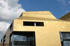 Modern byggnad som är klädd med guld-färgad metallvåg Royaltyfri Bild