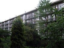 Modern byggnad som omges av träd royaltyfri bild