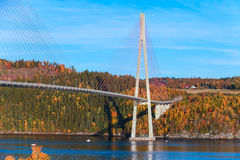 Modern cable-stayed bridge in Norway Royalty Free Stock Photography