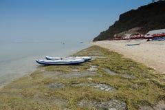 modern canoe boats with oars on the ocean beach Stock Photography