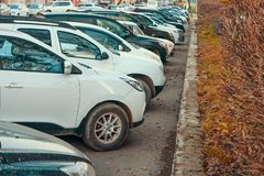 Modern cars parked on parking lot. Shallow DOF. royalty free stock image