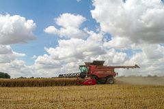 Modern Case Combine Harvester Cutting Crops Royalty Free Stock Photos