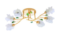 Modern chandelier with roses isolated on white. Background (with clipping path Stock Images