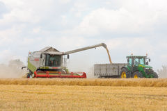 Modern claas combine at harvest time Stock Photo