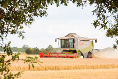 Modern claas combine at harvest time Stock Photos