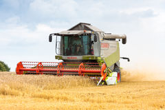 Modern claas combine at harvest time Stock Image