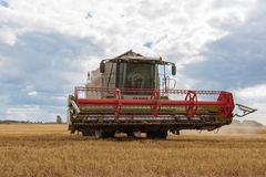 Modern claas combine at harvest time Royalty Free Stock Images