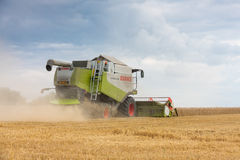 Modern claas combine at harvest time Stock Photography