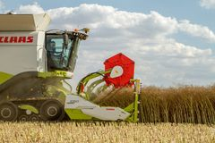 Modern Claas Combine Harvester Header Cutting Crops Royalty Free Stock Photography
