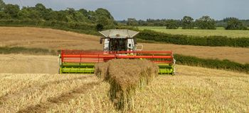 Modern claas combine harvester header cutting crops. Modern claas 770 combine harvester cutting crops oilseed rape working the field close up of header Royalty Free Stock Photo