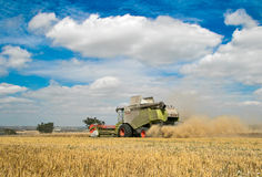Modern class combine harvester cutting crops Stock Images