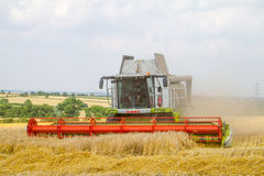 Modern class combine harvester cutting crops Royalty Free Stock Images