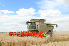 Modern class combine harvester cutting crops Royalty Free Stock Photo