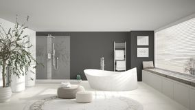 Modern classic bathroom with big round carpet, large panoramic w vector illustration