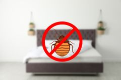 Modern clean mattress without bed bugs. In room stock images