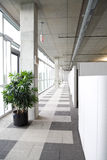 Modern clean office hallway Stock Photography