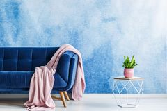 Modern coffee table, plant in a pink pot and sofa with a blanket royalty free stock image