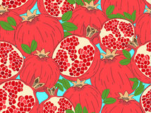 Modern colorful background with hand drawn juicy fresh pomegranates illustration. Royalty Free Stock Photo