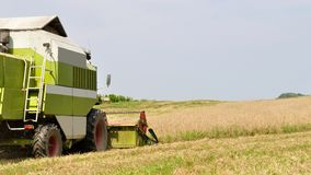 Modern combine in the field during harvesting Stock Images
