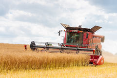 Modern case combine at harvest time Stock Image
