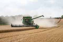 Modern combine harvester cutting crops corn wheat barley working golden field Royalty Free Stock Images