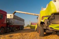 Modern combine harvester unloading grain in truck Royalty Free Stock Photo