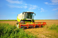 Modern combine on a wheat field Royalty Free Stock Image