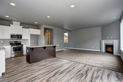 Modern and completely gray interior of home. Modern and completely gray unfurnished interior of luxury town house stock photos