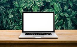 Modern computer,laptop with blank screen on table with green leaf. Backgrounds Stock Photography