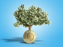 The modern concept of profit from investing in bitcoin 3d render. On blue Royalty Free Stock Photo