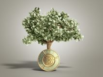 The modern concept of profit from investing in bitcoin 3d render. On grey Royalty Free Stock Photo