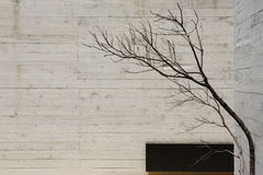 modern concreet binnenland Stock Afbeeldingen