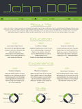 Modern curriculum vitae cv resume in green gray colors Royalty Free Stock Photography
