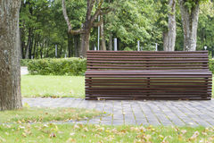 Modern curve shaped wooden bench under old and tall trees in the park as background image. Modern curve shaped brown wooden bench under old and tall trees in the Stock Image