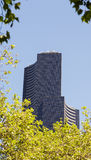 Modern Curved Tower in Seattle Through Trees Stock Photography