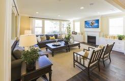 Modern Custom Living Room Interior Royalty Free Stock Photography
